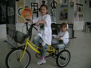 carga, trike, mini etc...